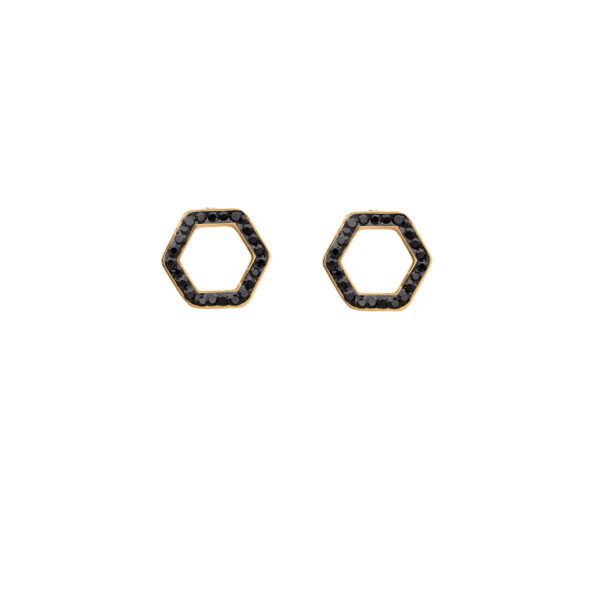Earrings Stainless Steel 316L in Gold Color with Black Rhinestones