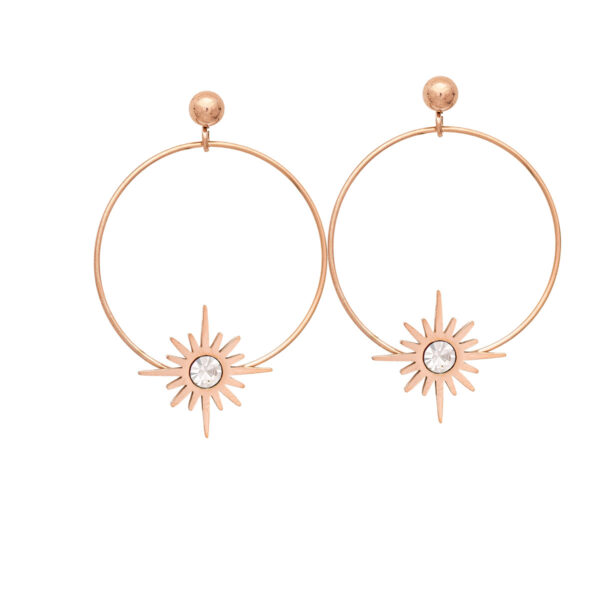 Earrings Stainless Steel 316L in Pink Gold Color