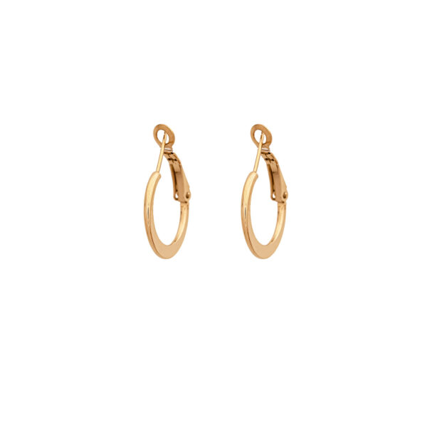 Gold Color Earrings 20mm Stainless Steel 316L