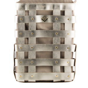 Claudia Asti Backpack Gold